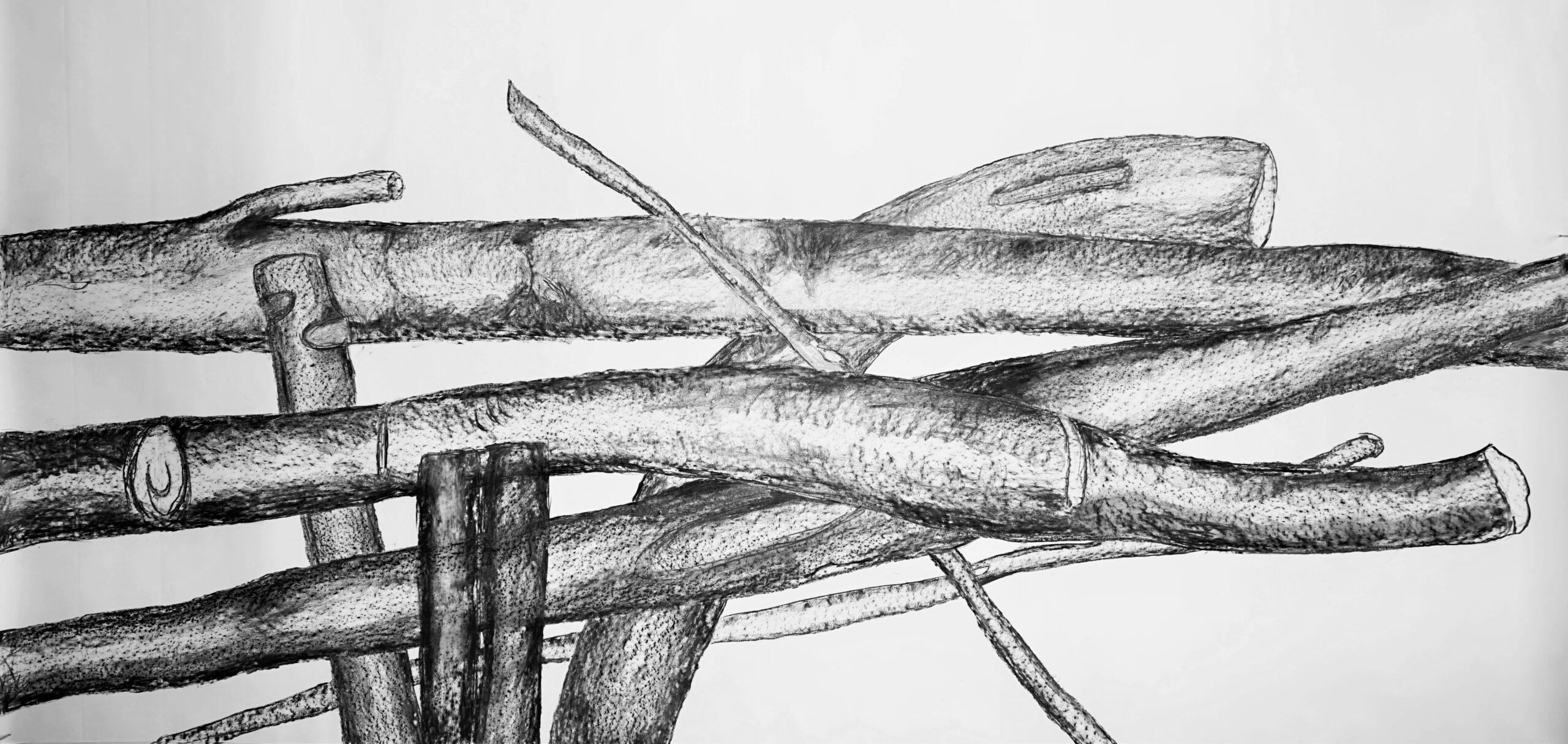 Serie I, 2,70m x 1,50m, Grafitstift, Kohle auf Papier